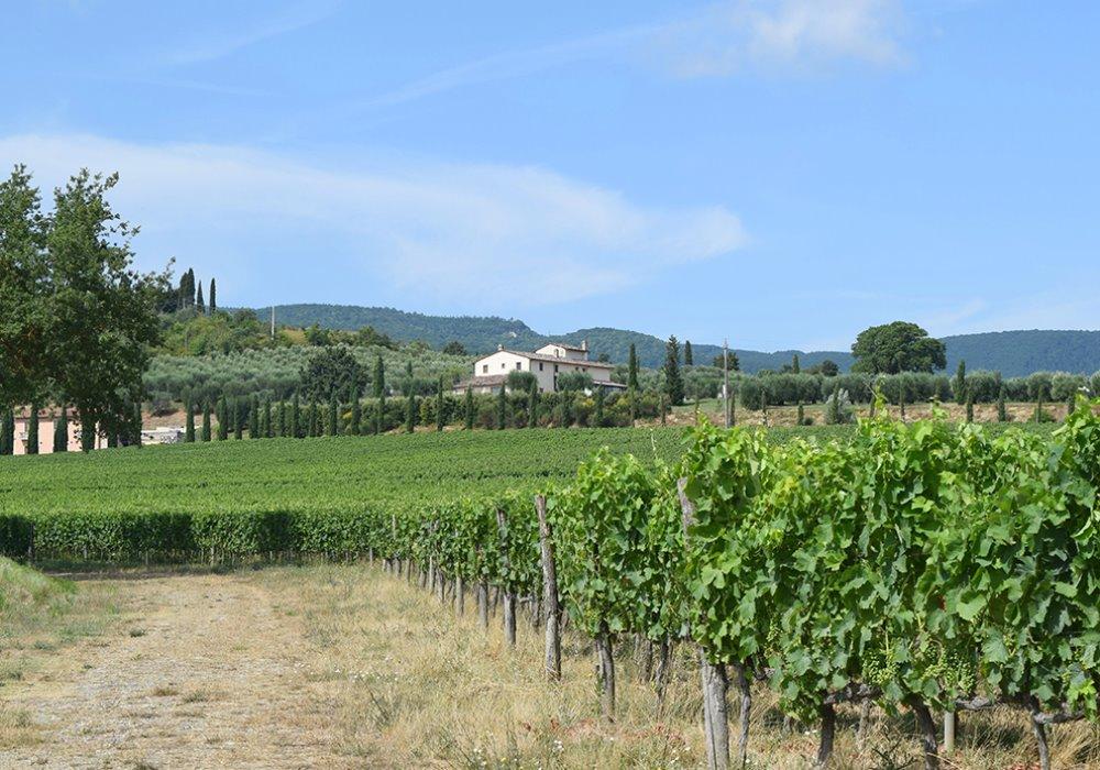 CERCHI UNA VACANZA CON TRATTAMENTI BENESSERE?  Scegli Le Buche Wine Resort&Spa