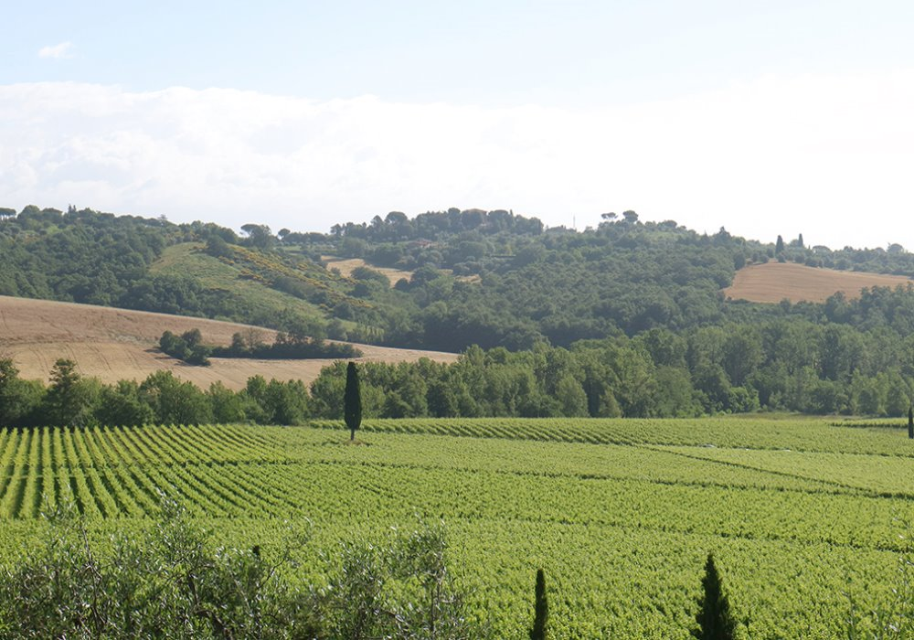 HOLIDAYS SPRING IN TUSCANY Visit the Val d'Orcia