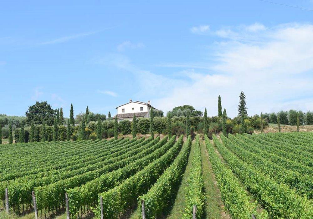 Vacanze fra i Vigneti Scoprite Le Buche Wine Resort&Spa
